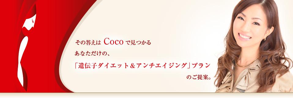 その答えはCOCOで見つかる